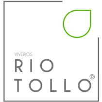 rio-tollo