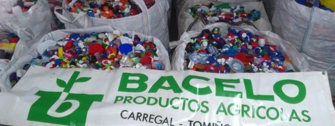 suministros Horticolas Bacelo_1