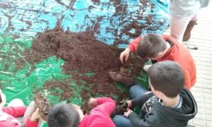 Niños cogiendo la tierra