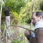 """Prácticas do curso """"Enxertos de verán"""" en Viveiros Nilo"""