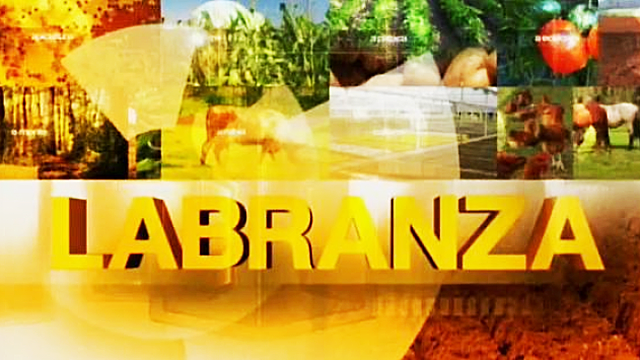 logo TVGLABRANZA